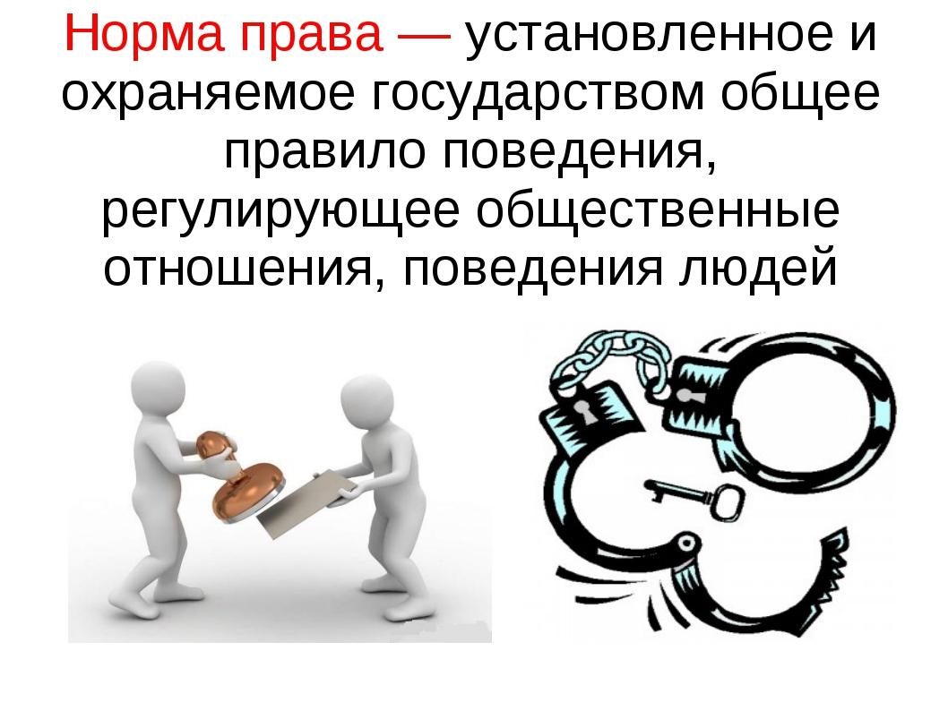 Норма права — установленное и охраняемое государством общее правило поведения...