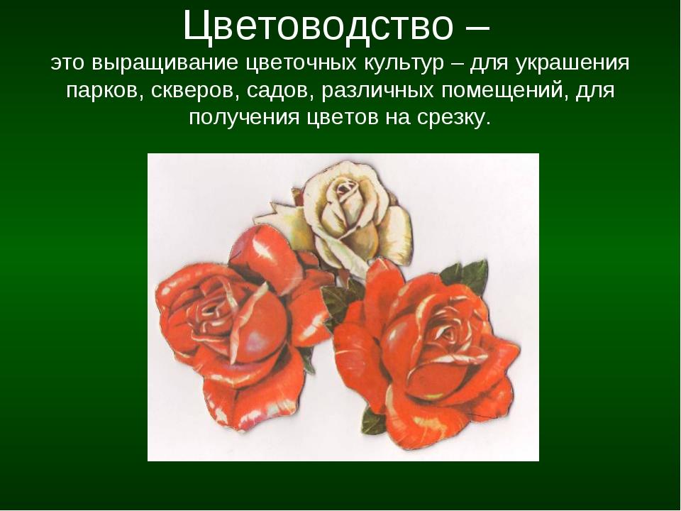 Цветоводство – это выращивание цветочных культур – для украшения парков, скве...