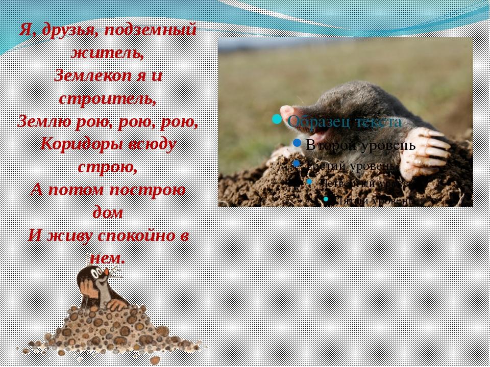 Я, друзья, подземный житель, Землекоп я и строитель, Землю рою, рою, рою, Ко...