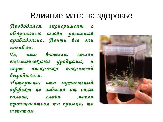 Проводился эксперимент с облучением семян растения арабидопсис. Почти все они...