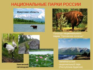 """Иркутская область Природа национального парка """"Орловское полесье"""" Хинганский"""