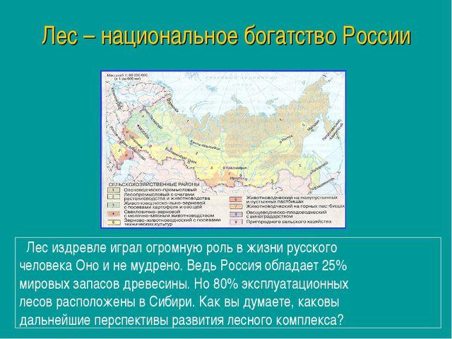 Лес – национальное богатство России Лес издревле играл огромную роль в жизни...