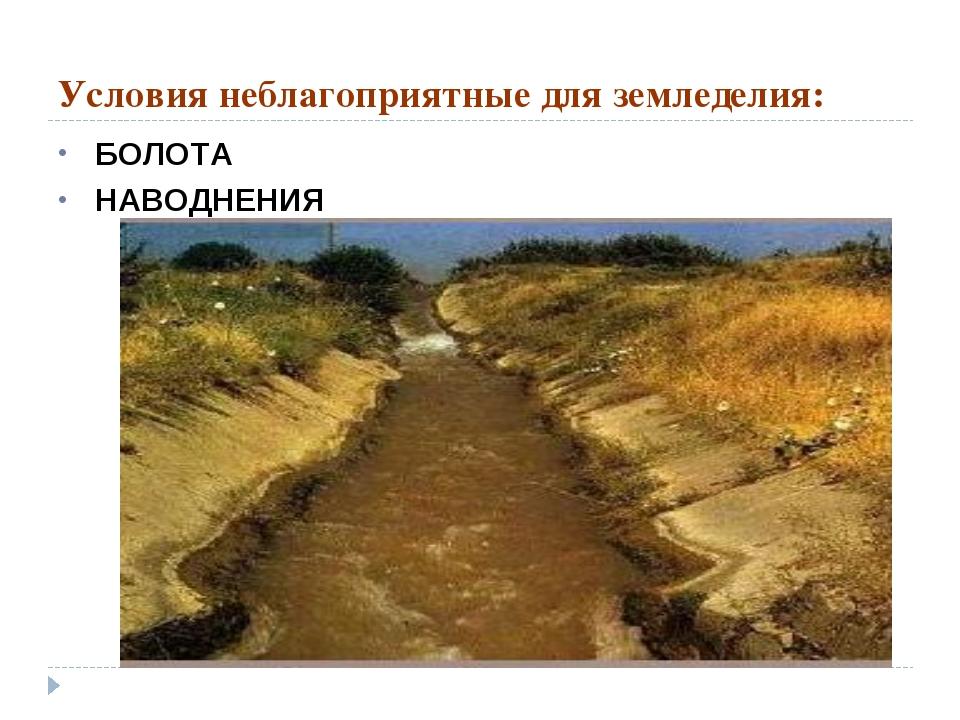 Условия неблагоприятные для земледелия: БОЛОТА НАВОДНЕНИЯ