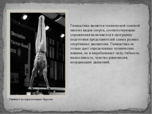 Гимнастика является технической основой многих видов спорта, соответствующие