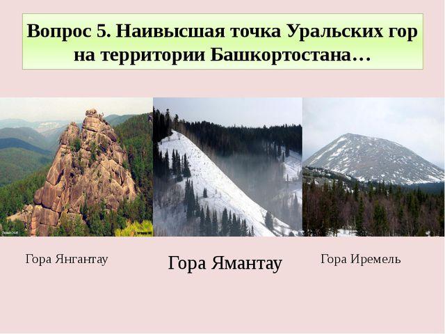 Вопрос 5. Наивысшая точка Уральских гор на территории Башкортостана… Гора Ире...