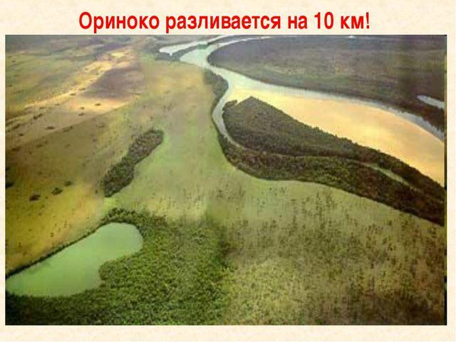 Ориноко разливается на 10 км!
