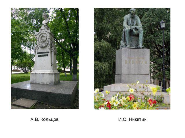 А.В. Кольцов И.С. Никитин