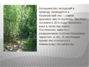 Большинство экскурсий в природу проводятся в Казановский лес – самое красиво