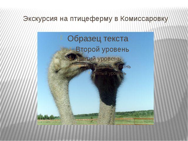 Экскурсия на птицеферму в Комиссаровку