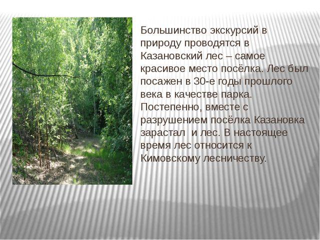 Большинство экскурсий в природу проводятся в Казановский лес – самое красиво...