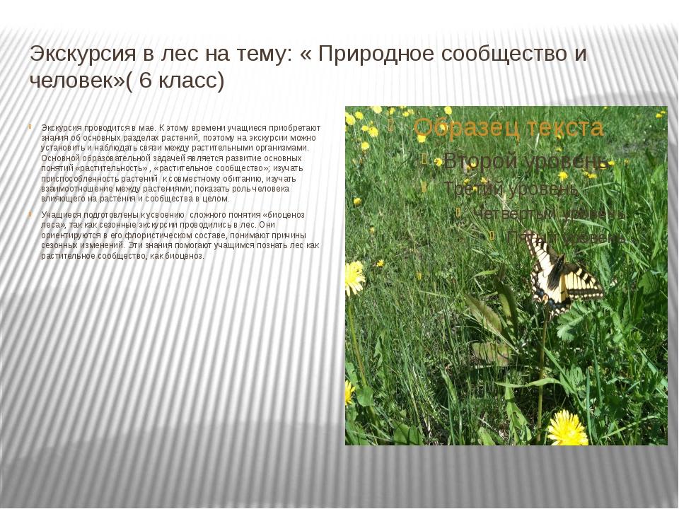Экскурсия в лес на тему: « Природное сообщество и человек»( 6 класс) Экскурси...