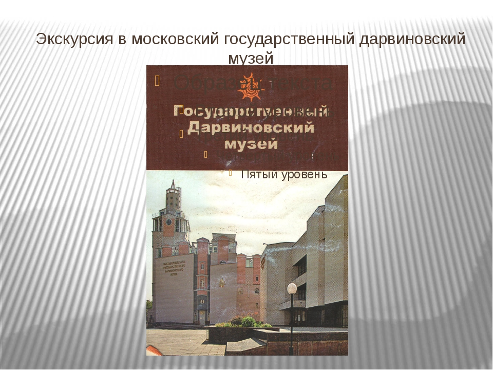 Экскурсия в московский государственный дарвиновский музей