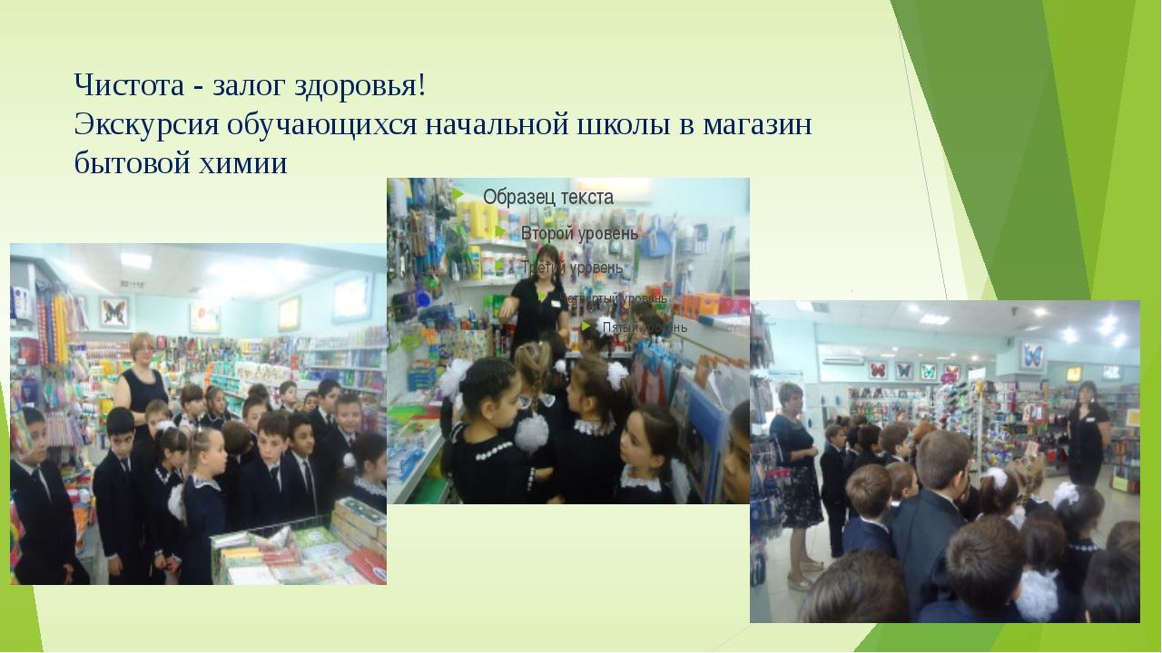 Чистота - залог здоровья! Экскурсия обучающихся начальной школы в магазин быт...