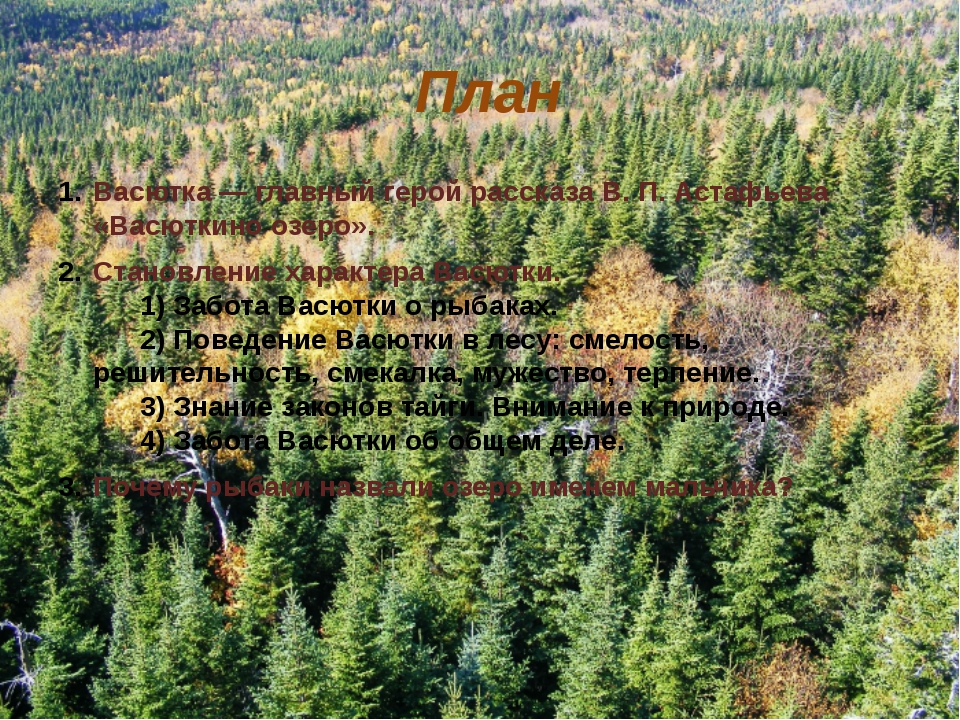 План Васютка—главный герой рассказа В.П.Астафьева «Васюткино озеро». Ста...