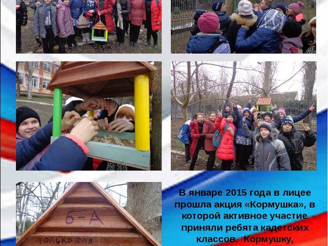 В январе 2015 года в лицее прошла акция «Кормушка», в которой активное участи...