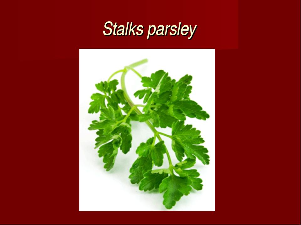 Stalks parsley