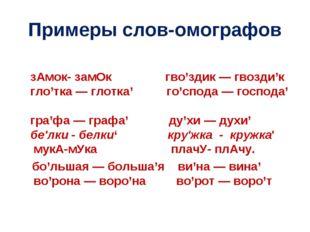 Примеры слов-омографов зАмок- замОк гво'здик — гвозди'к гло'тка — глотка' го'