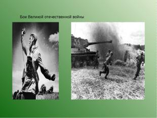 Бои Великой отечественной войны