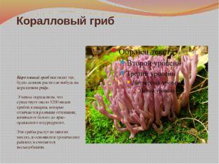Коралловый гриб Коралловый гриб выглядит так, будто должен расти где-нибудь н