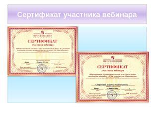 Сертификат участника вебинара