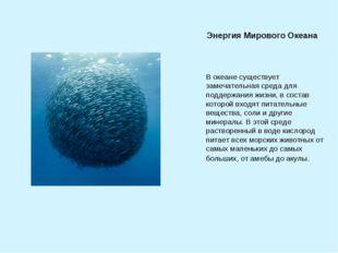 В океане существует замечательная среда для поддержания жизни, в состав котор