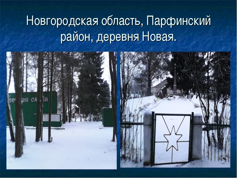Новгородская область, Парфинский район, деревня Новая.