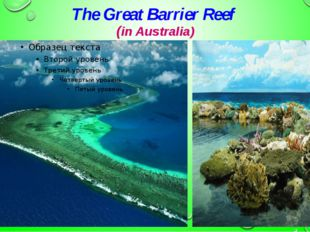 The Great Barrier Reef (in Australia)