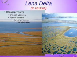 Lena Delta (in Russia)