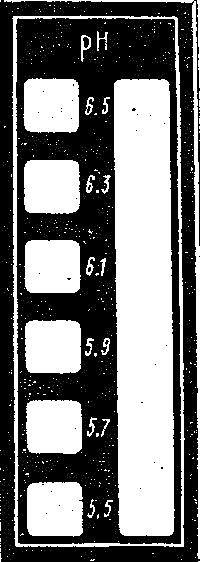 сканирование0061