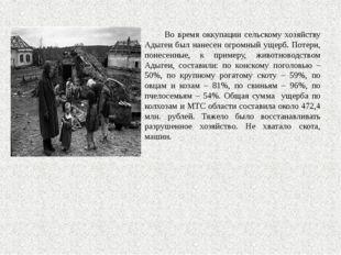 Во время оккупации сельскому хозяйству Адыгеи был нанесен огромный ущерб. По