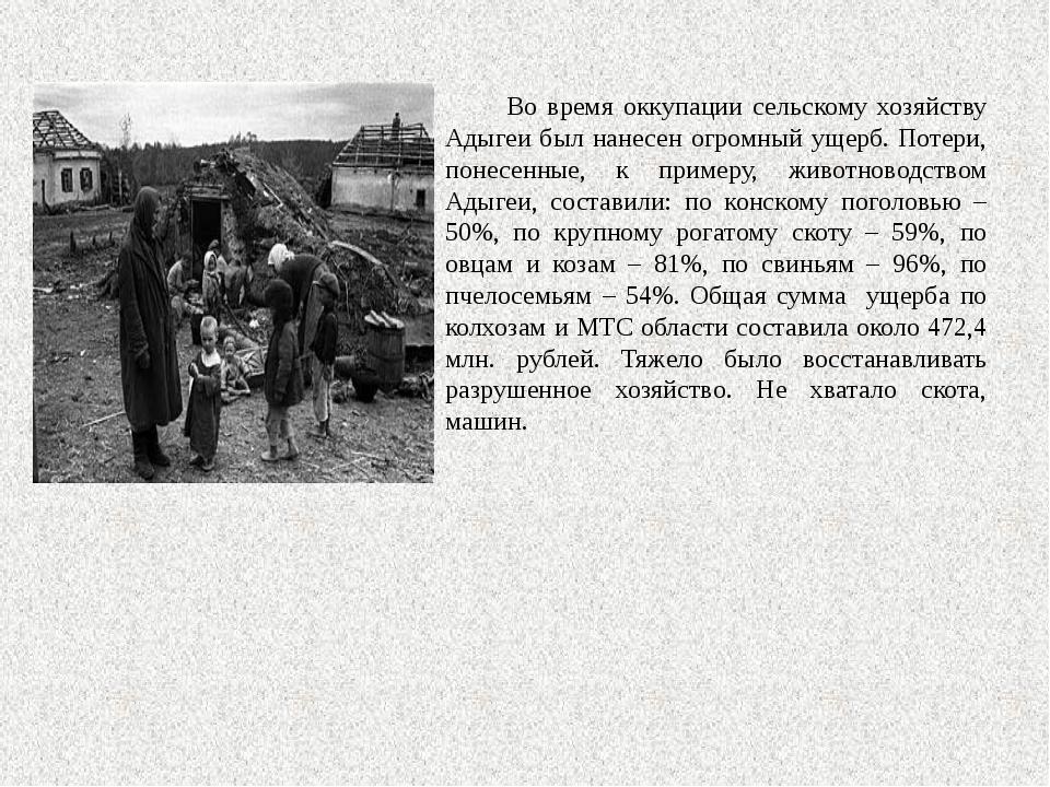 Во время оккупации сельскому хозяйству Адыгеи был нанесен огромный ущерб. По...