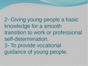 2- Giving young people a basic knowledge for a smooth transition to work or p