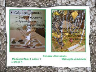 Коллаж «Листопад» Мальцев Иван 1 класс Г Мальцева Анжелика 1 класс А