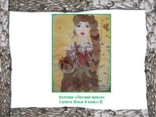 Коллаж «Лесная краса» Сапега Илья 4 класс В