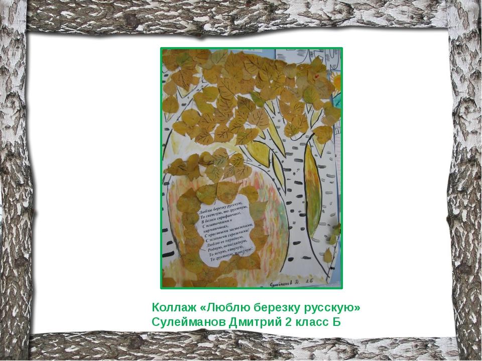 Коллаж «Люблю березку русскую» Сулейманов Дмитрий 2 класс Б