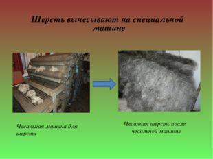 Шерсть вычесывают на специальной машине Чесальная машина для шерсти Чесанная