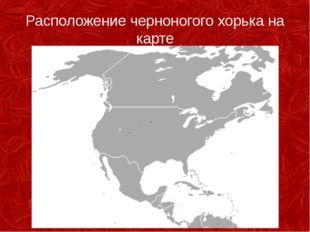 Расположение черноногого хорька на карте