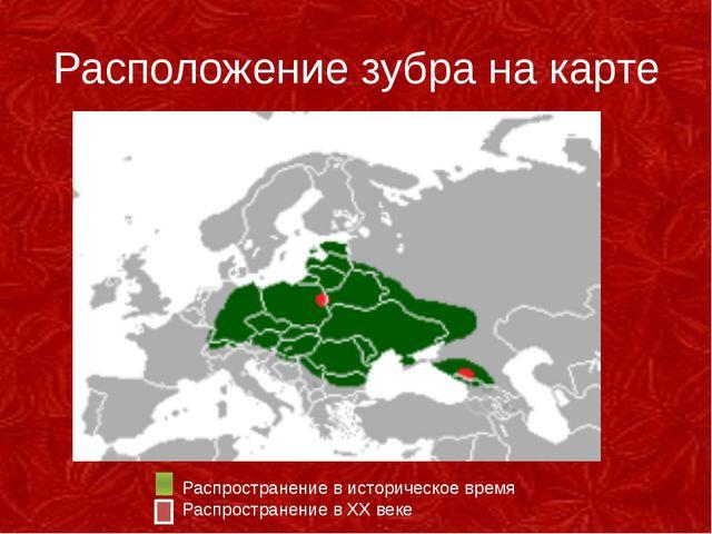 Расположение зубра на карте Распространение в историческое время Ра...