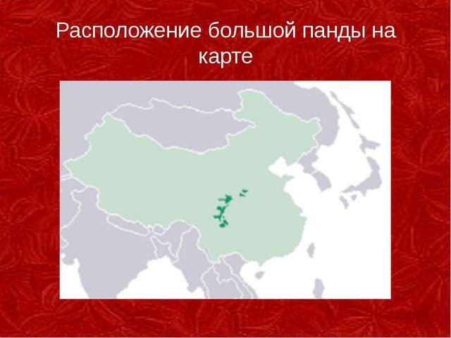 Расположение большой панды на карте