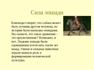 Сила лошади Коневоды говорят, что собака может быть лучшим другом человека, н