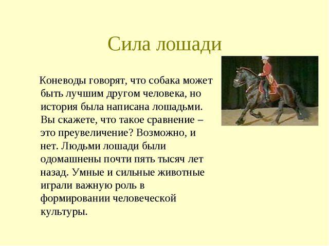 Сила лошади Коневоды говорят, что собака может быть лучшим другом человека, н...