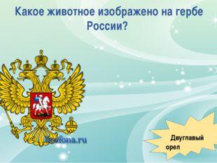 Какое животное изображено на гербе России? Двуглавый орел