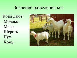 Значение разведения коз Козы дают: Молоко Мясо Шерсть Пух Кожу.