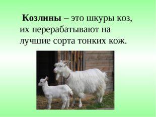 Козлины – это шкуры коз, их перерабатывают на лучшие сорта тонких кож.