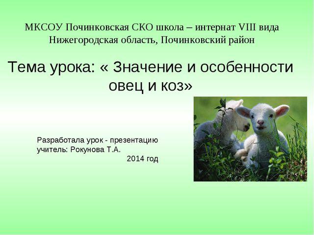 МКСОУ Починковская СКО школа – интернат VIII вида Нижегородская область, Поч...