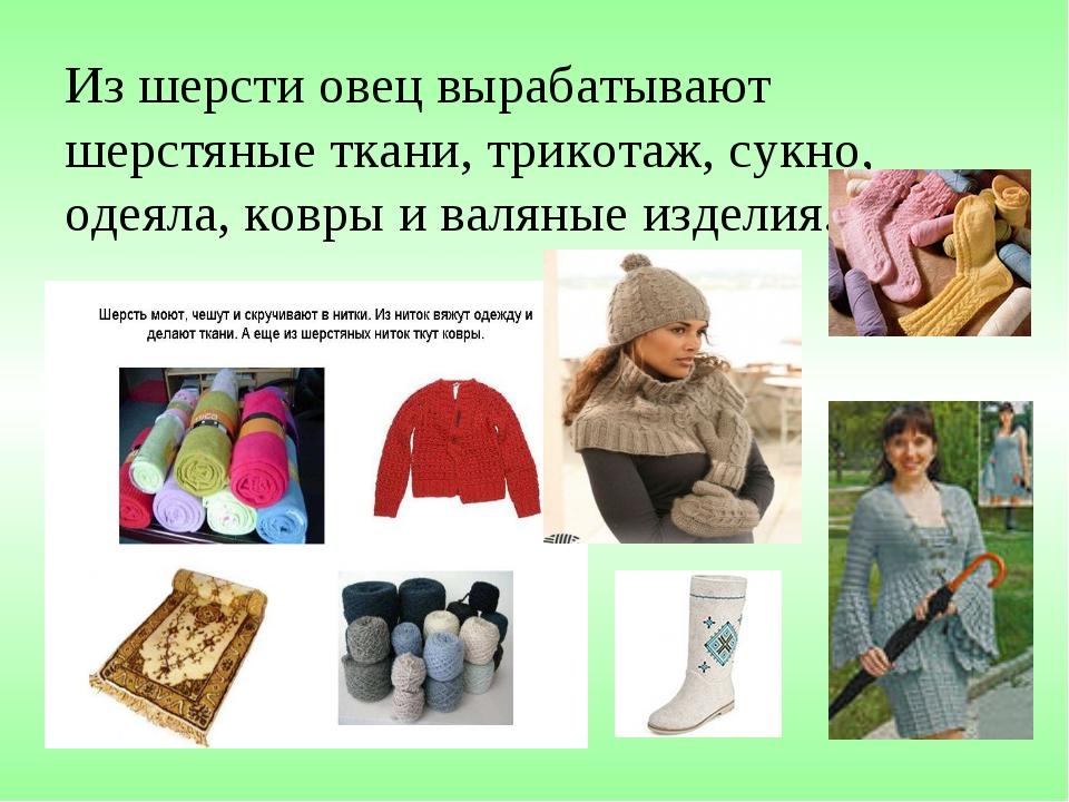 Из шерсти овец вырабатывают шерстяные ткани, трикотаж, сукно, одеяла, ковры и...