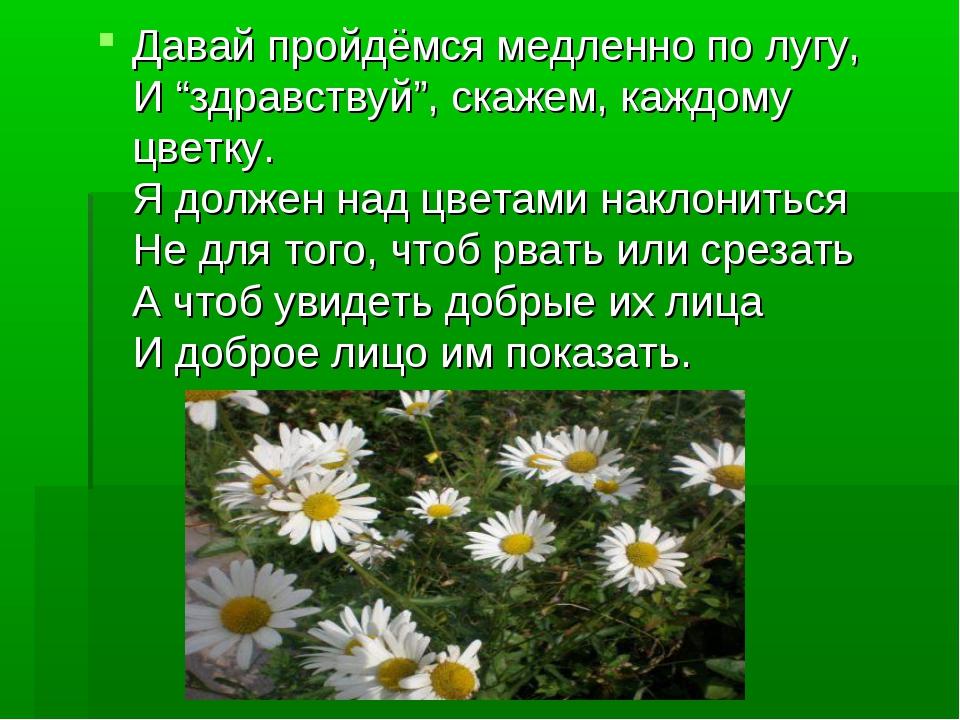 """Давай пройдёмся медленно по лугу, И """"здравствуй"""", скажем, каждому цветку. Я д..."""