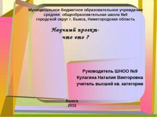 Руководитель ШНОО №9 Кулагина Наталия Викторовна учитель высшей кв. категории