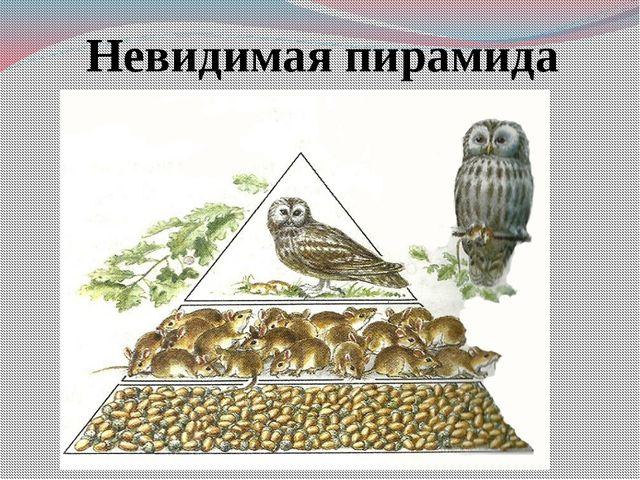 Невидимая пирамида