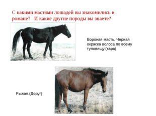 С какими мастями лошадей вы знакомились в романе? И какие другие породы вы зн
